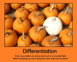 application of differentiation in economics and business