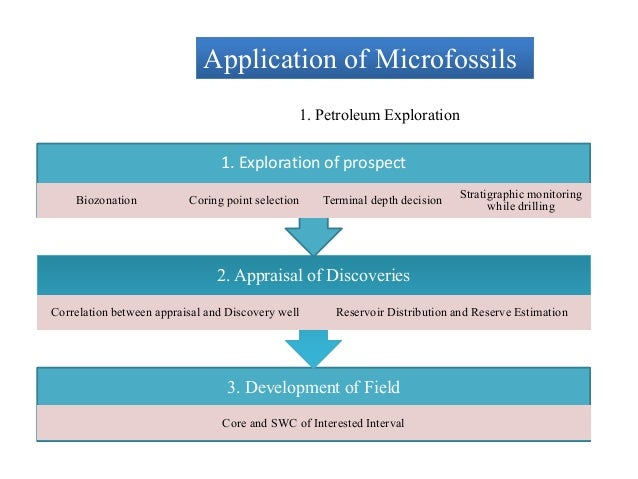 application of microfossils in petroleum exploration